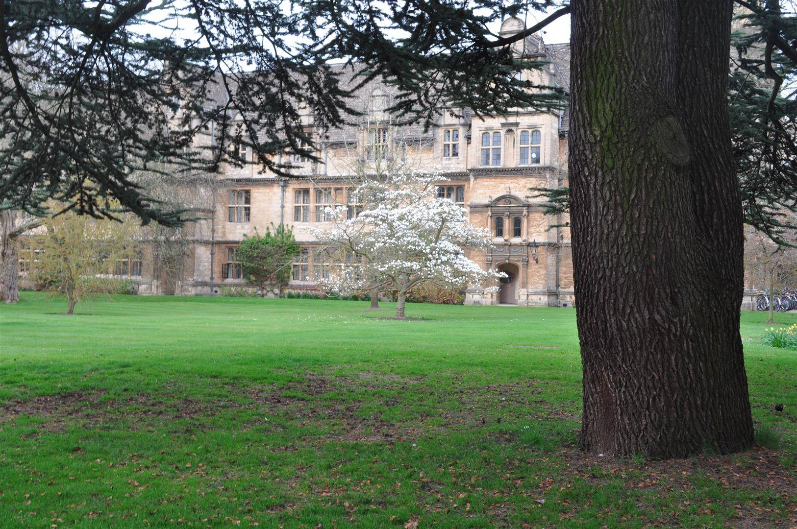 Trinity College 1, Oxford
