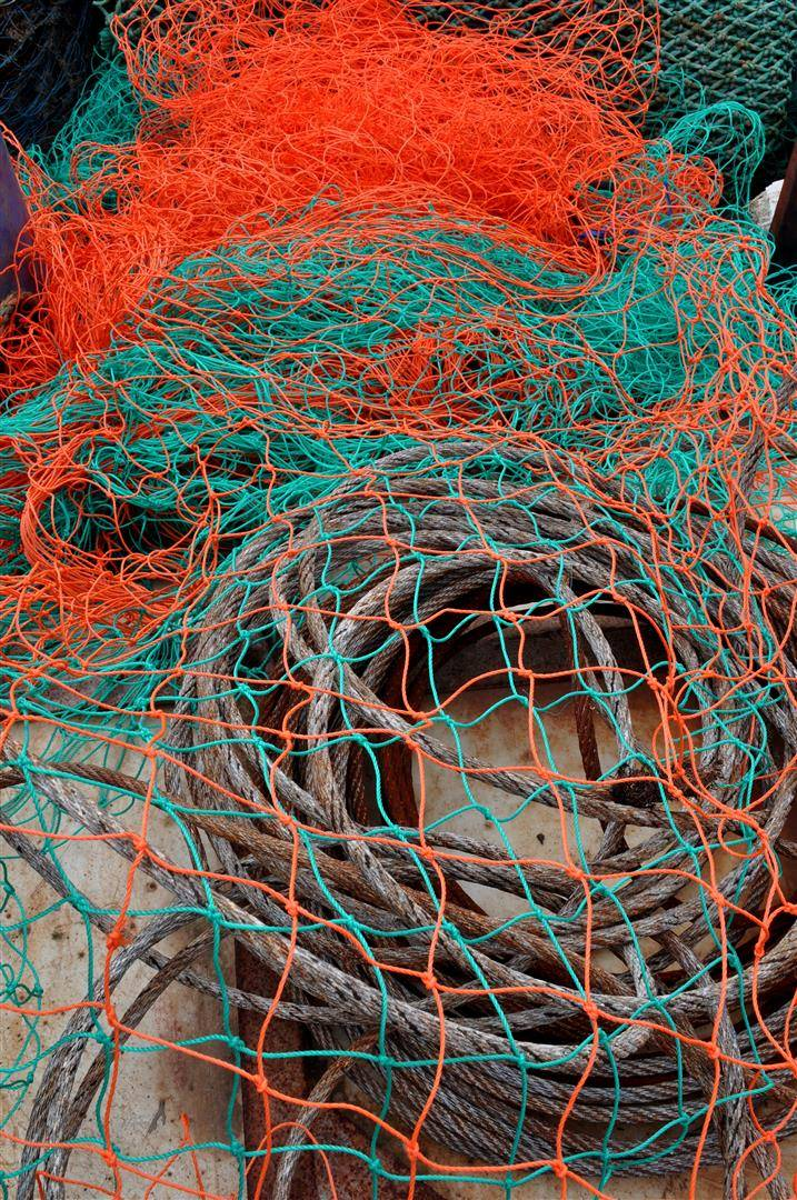 Nets 1, Torquay Harbor