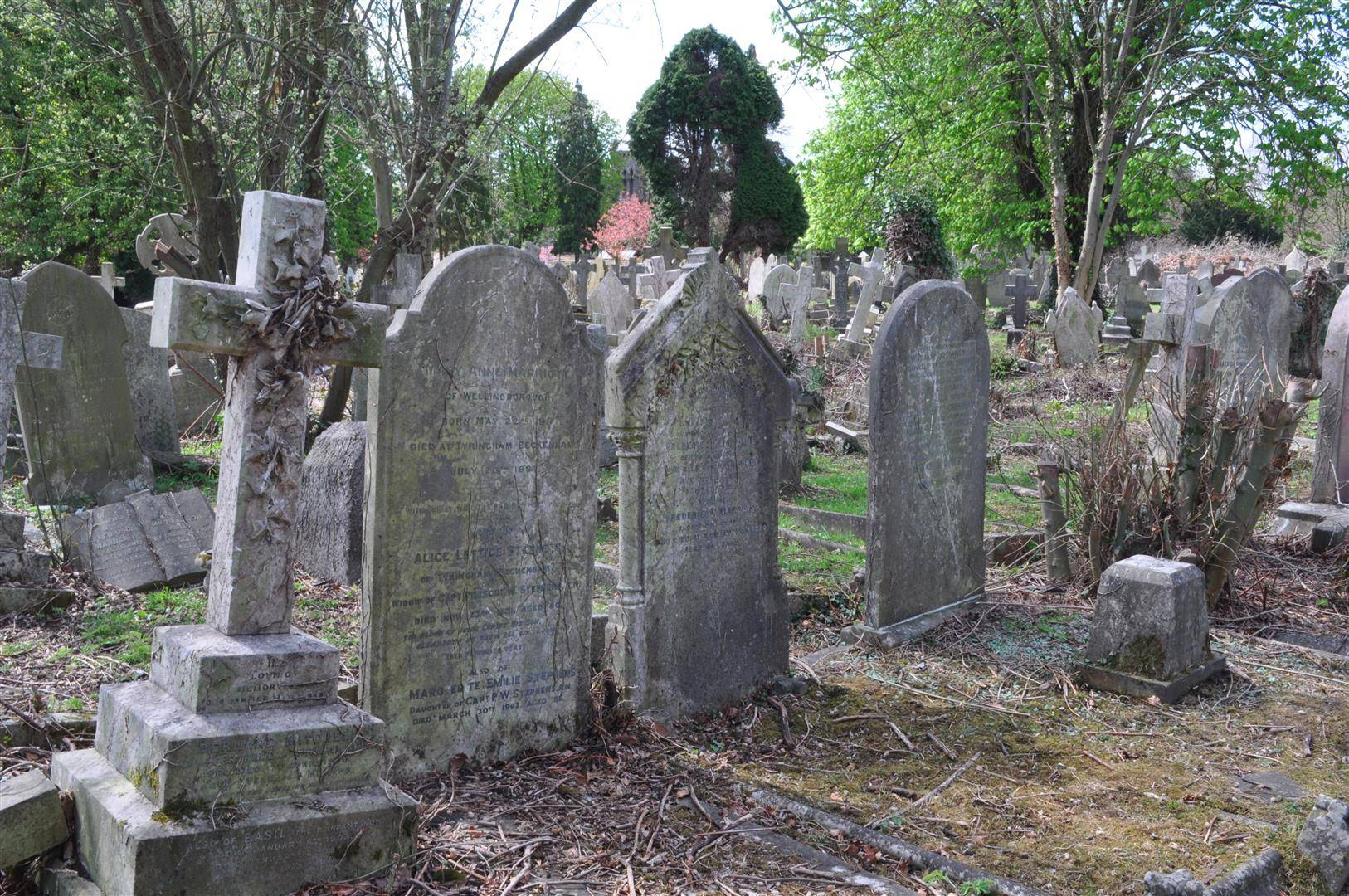 Cemetery 1, Elmers End, London