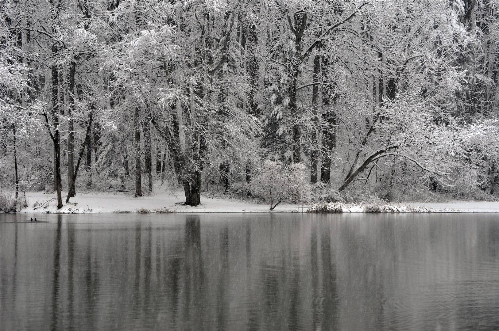 Pine Lake, Late March Snow 1