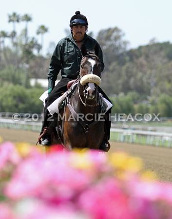 Lava Man and Flowers