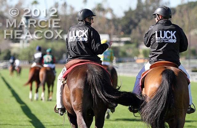 """""""Luck"""" Outriders"""