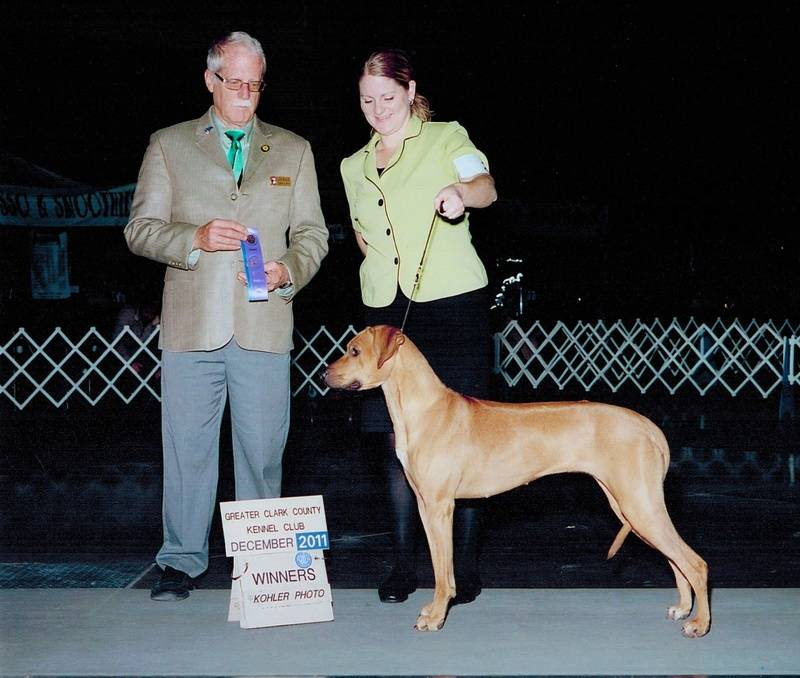 Topango -Clark County Kennel Club Dec 2011