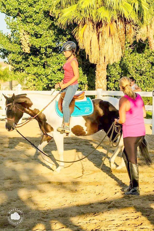 Horse Camp Canyon Lake Equestrian Center 2014