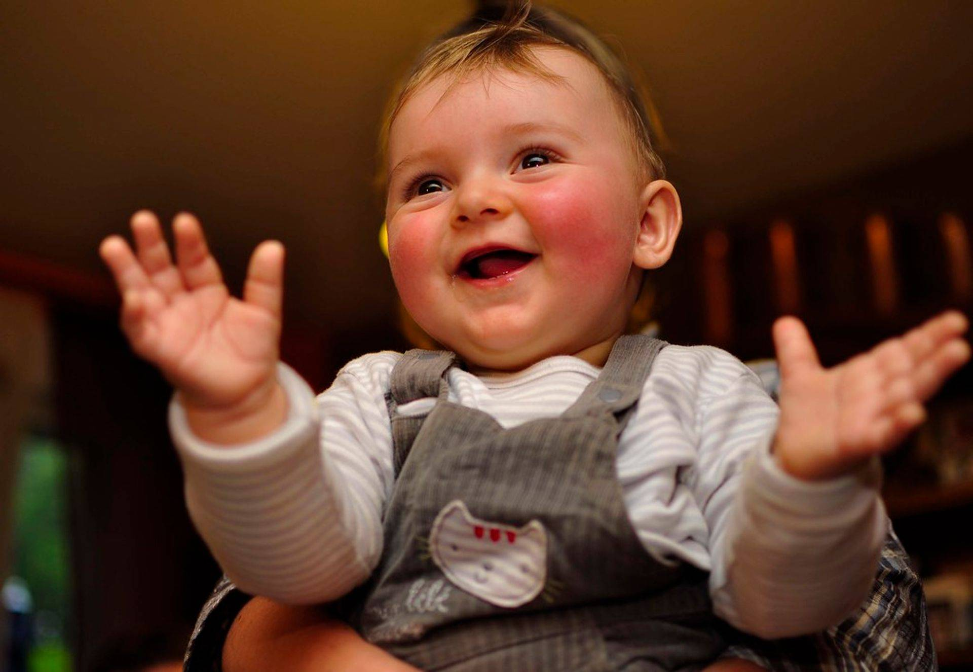 signes et bébés - Formation pros petite enfance