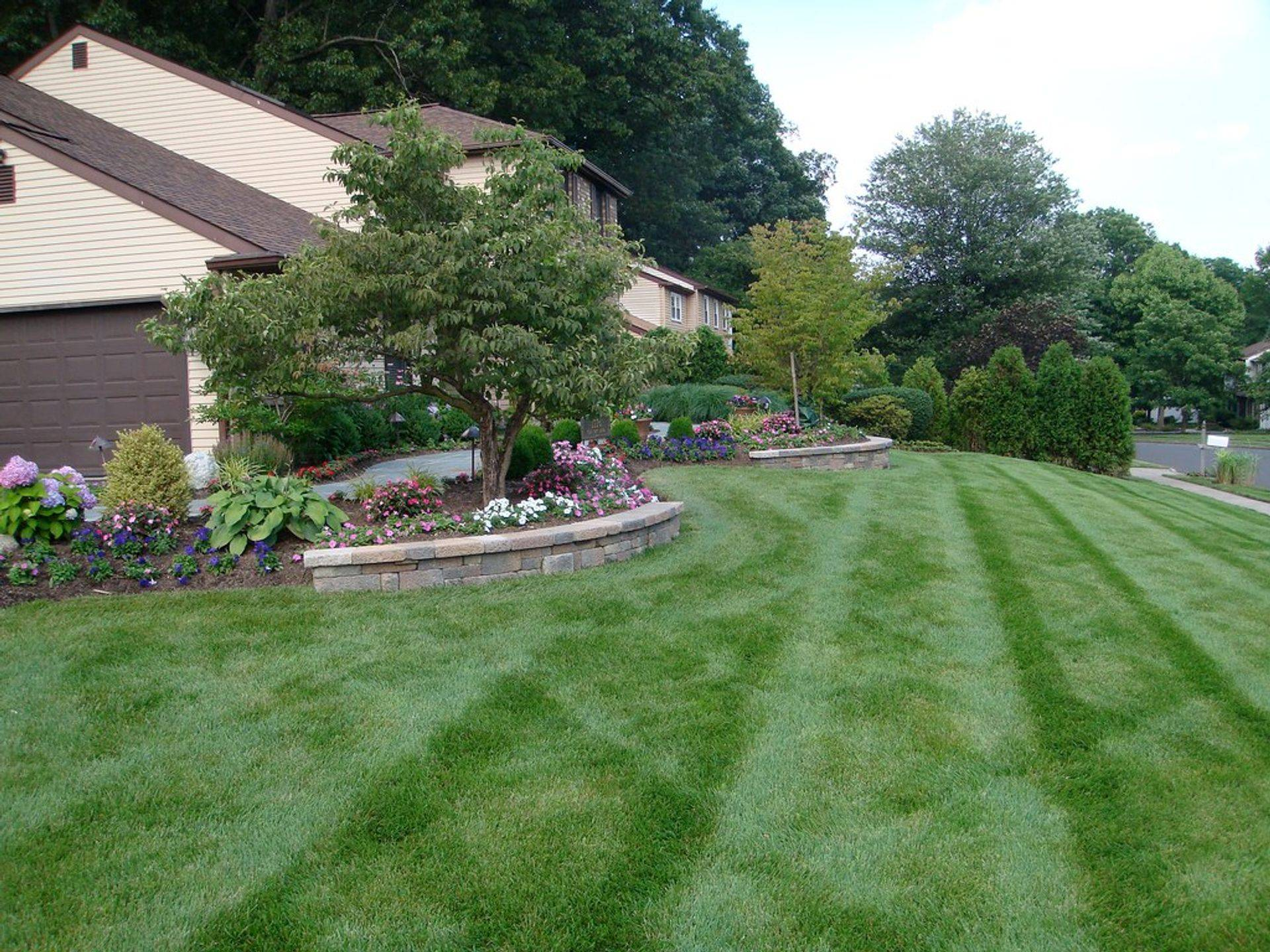 Lawn Mowing client property