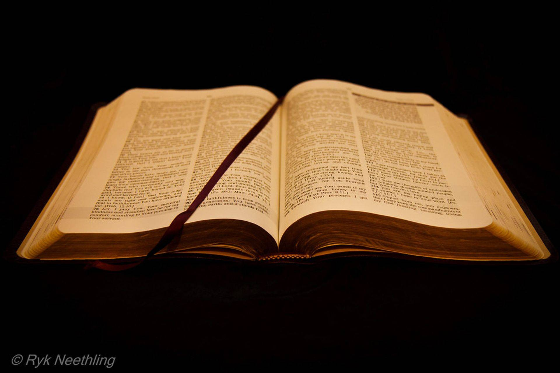 We speak where the Bible speaks and are silent where the Bible is silent.