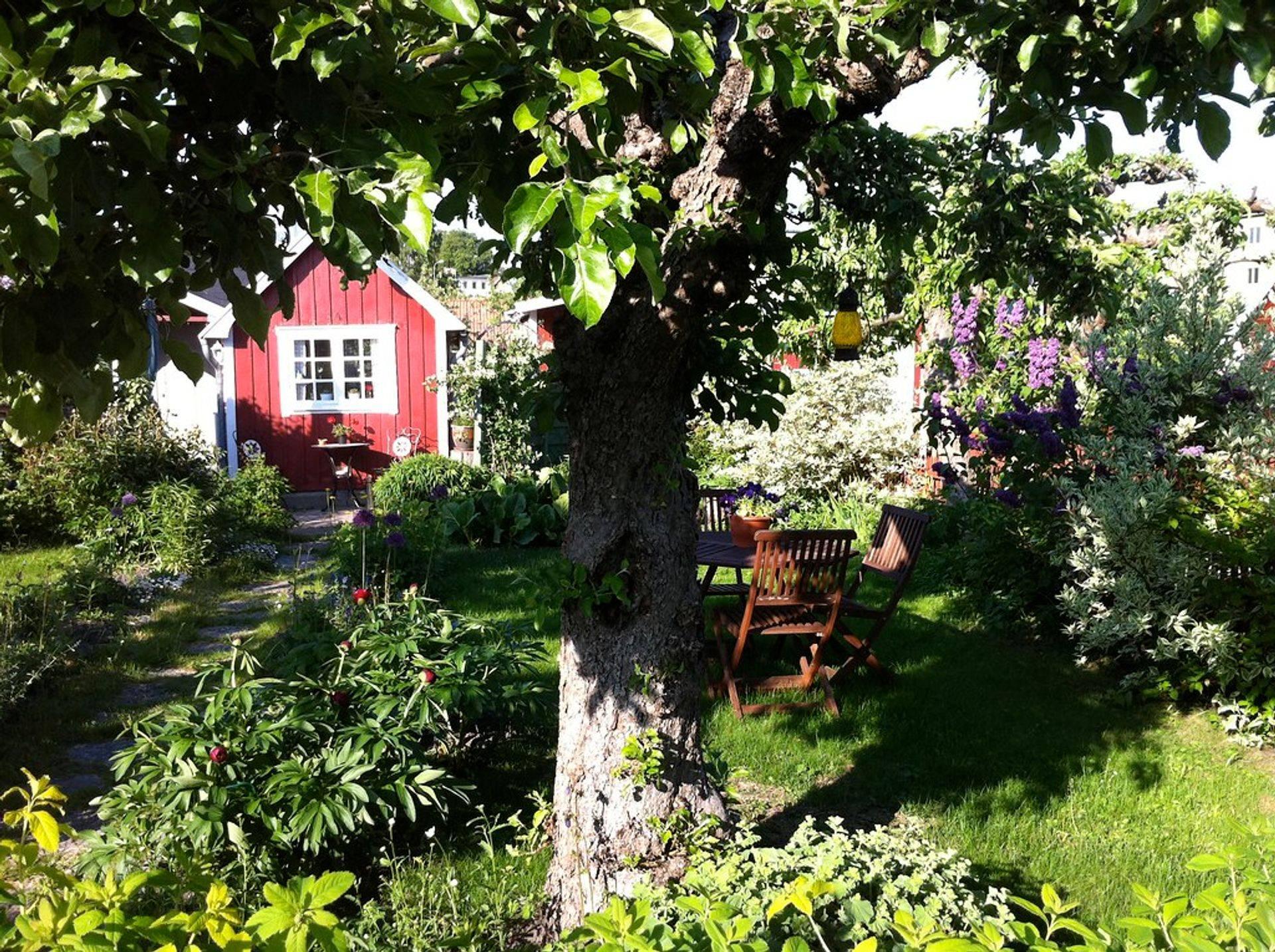 Trädgårdsservice. fastighetsservice