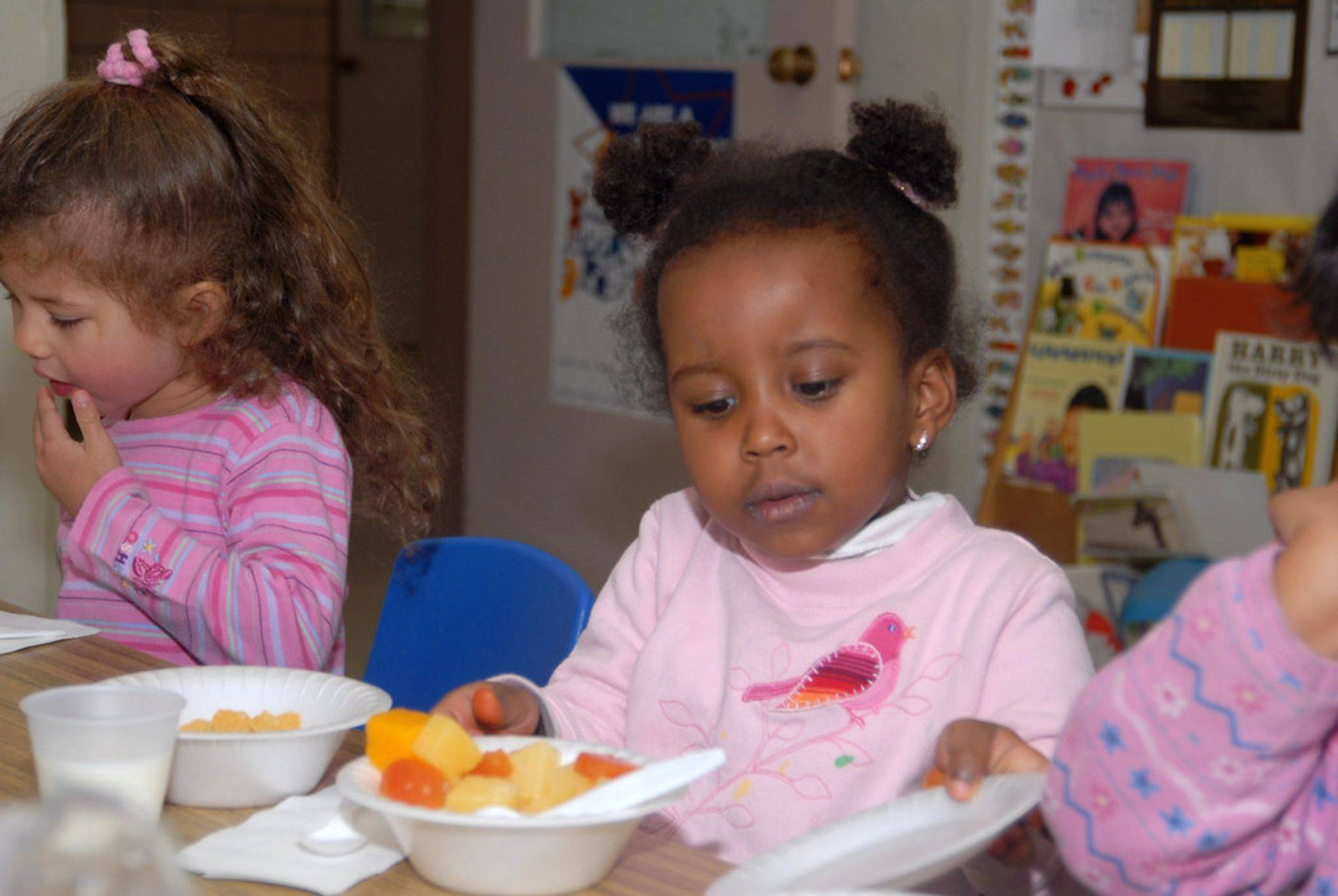 Toddler Day Care and Early Education