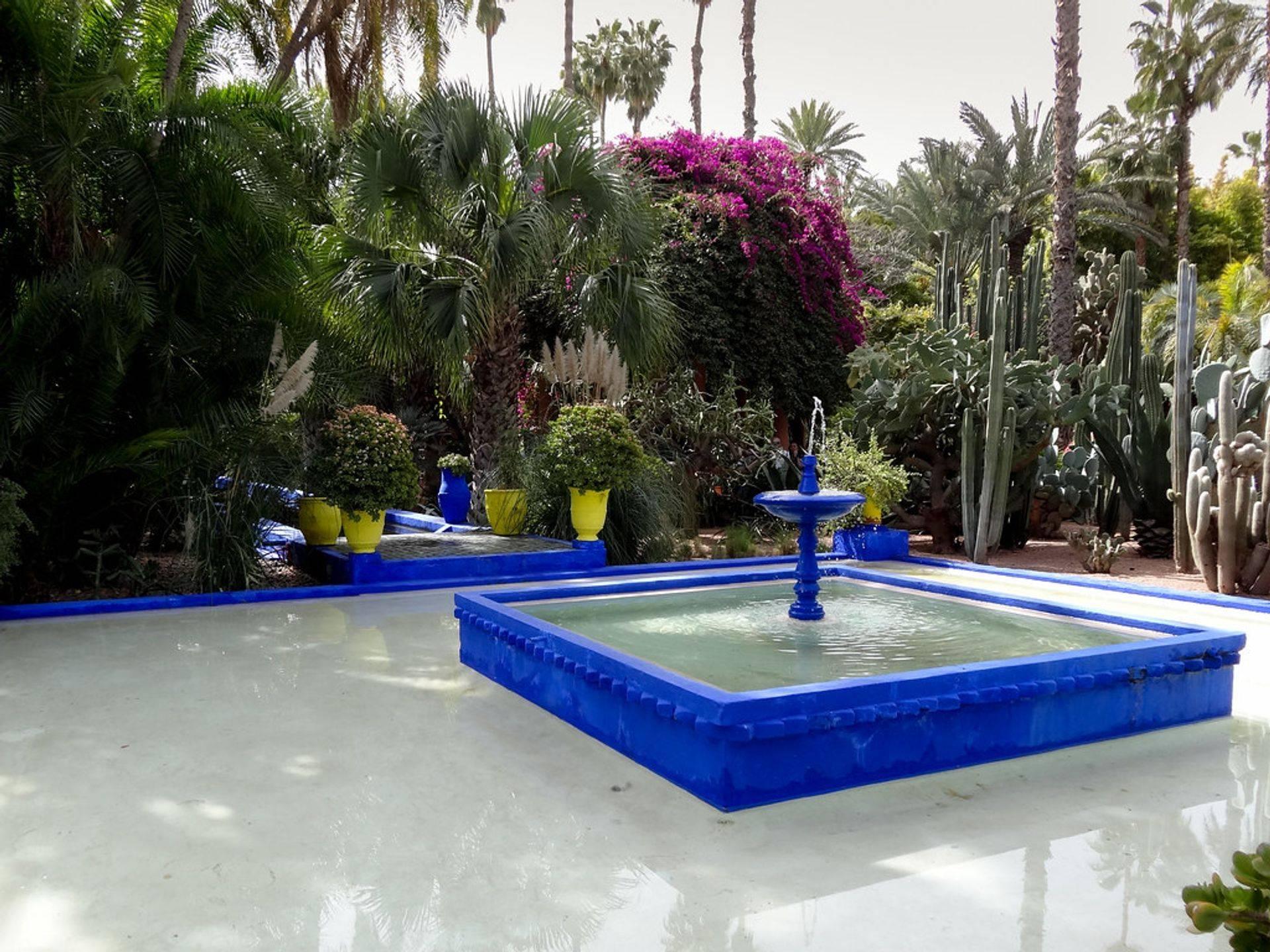 Majorelle gardens (Marrakesh)
