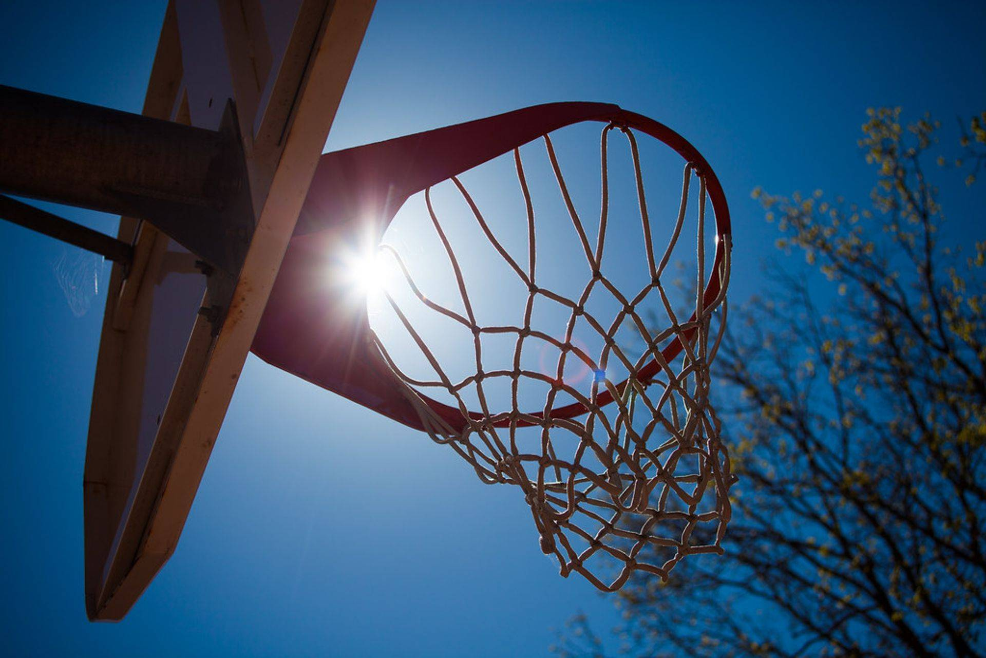 Basket ball training, camp, game, team, sports, tournament, practice