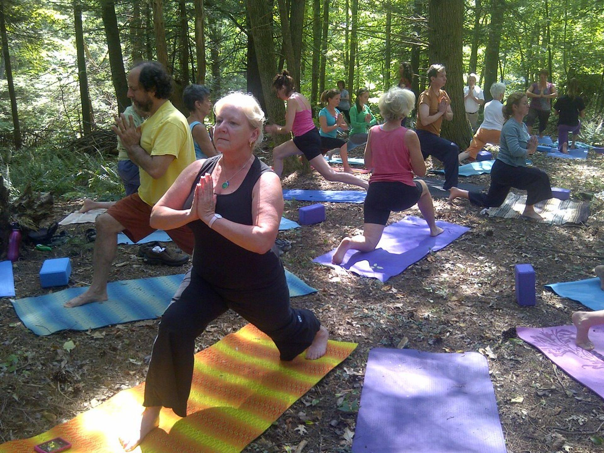 Yoga in 't Park; toegankelijk voor jong en oud