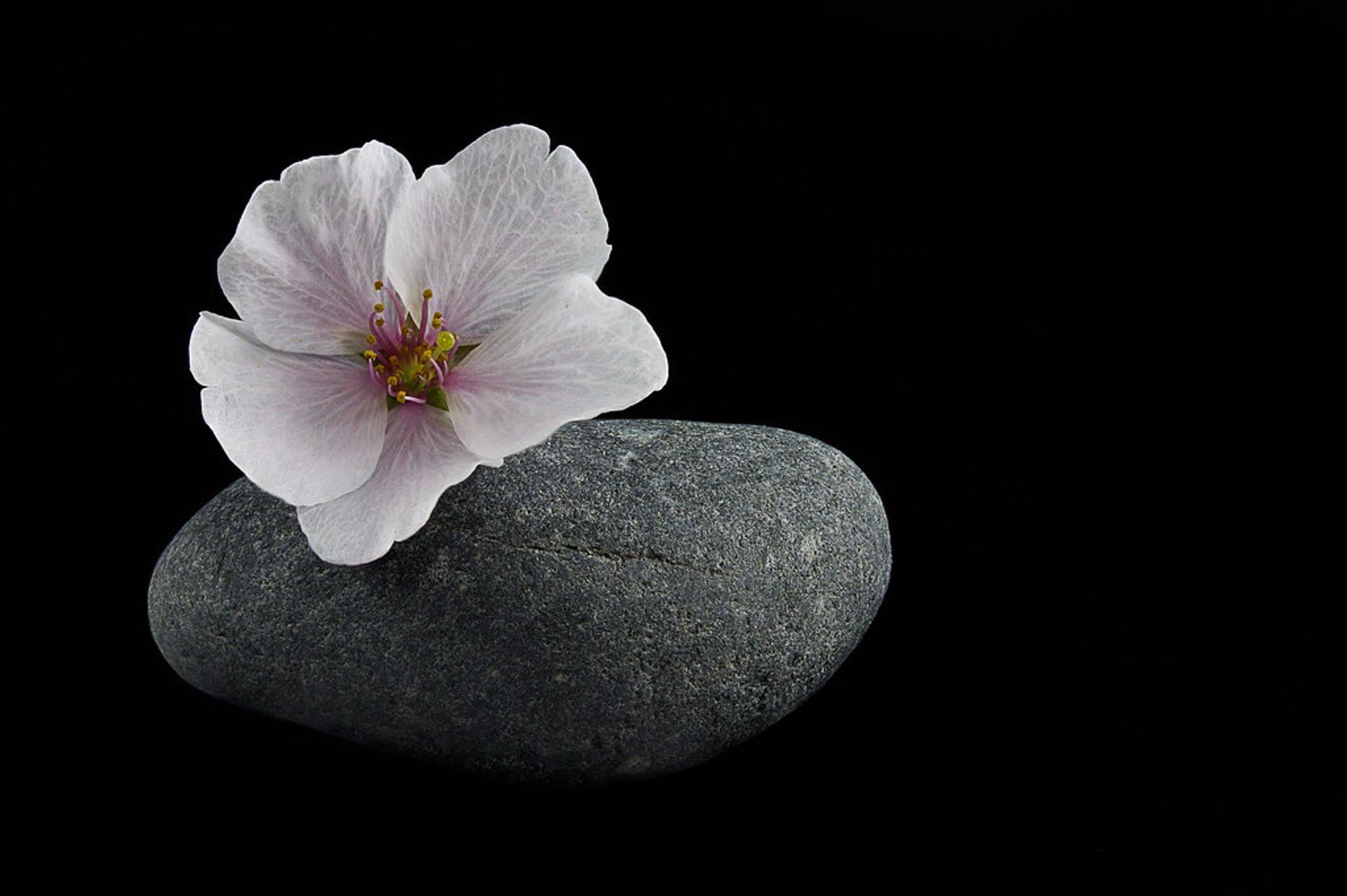 masage-bien-être-dijon