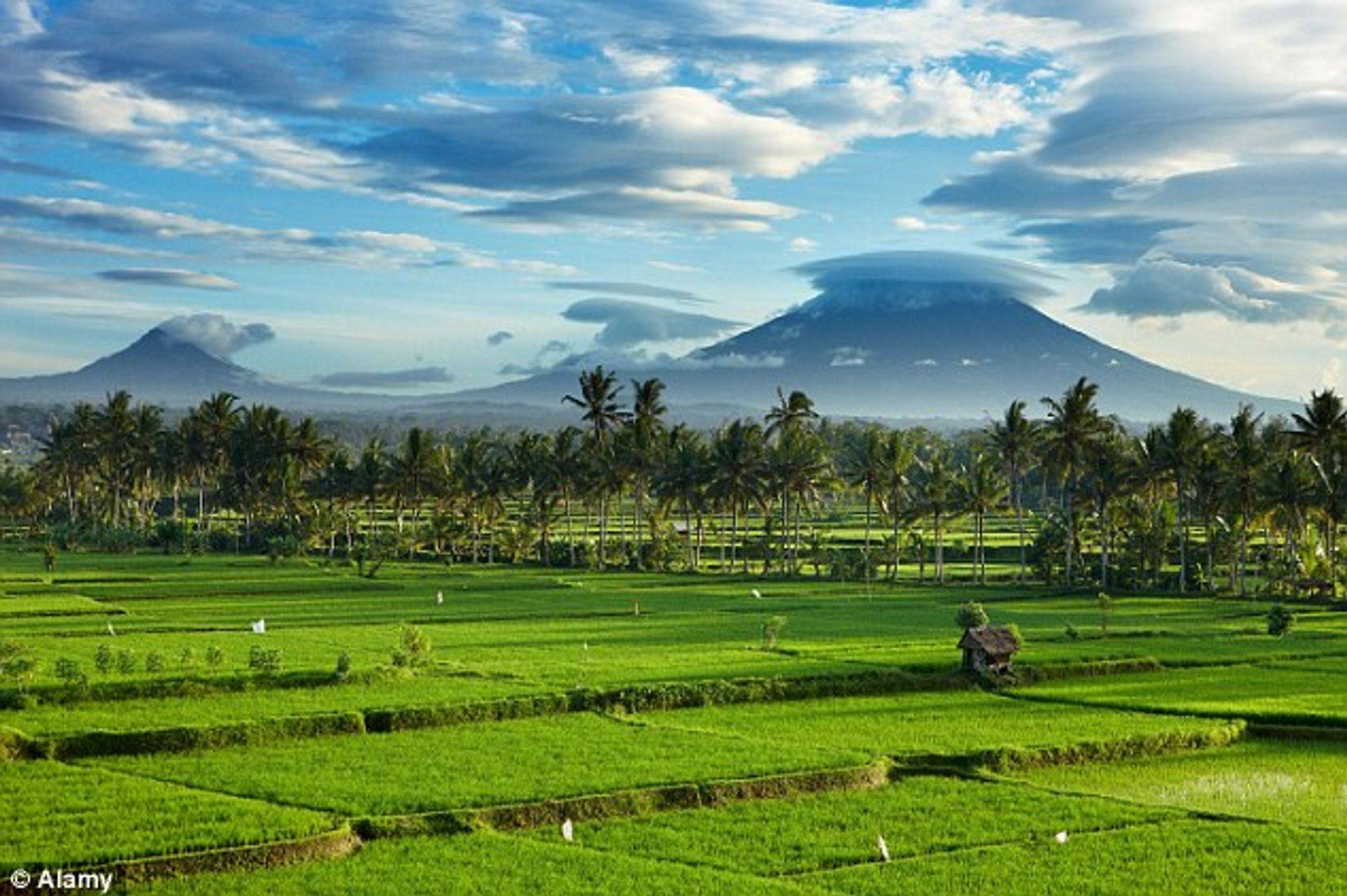 Excellent view in bali that we suggested to you