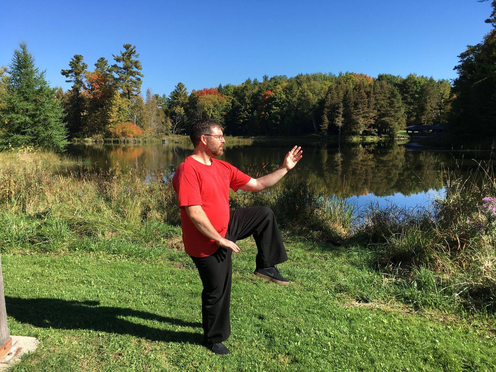 Sifu Magwood, Golden rooster stands on one leg