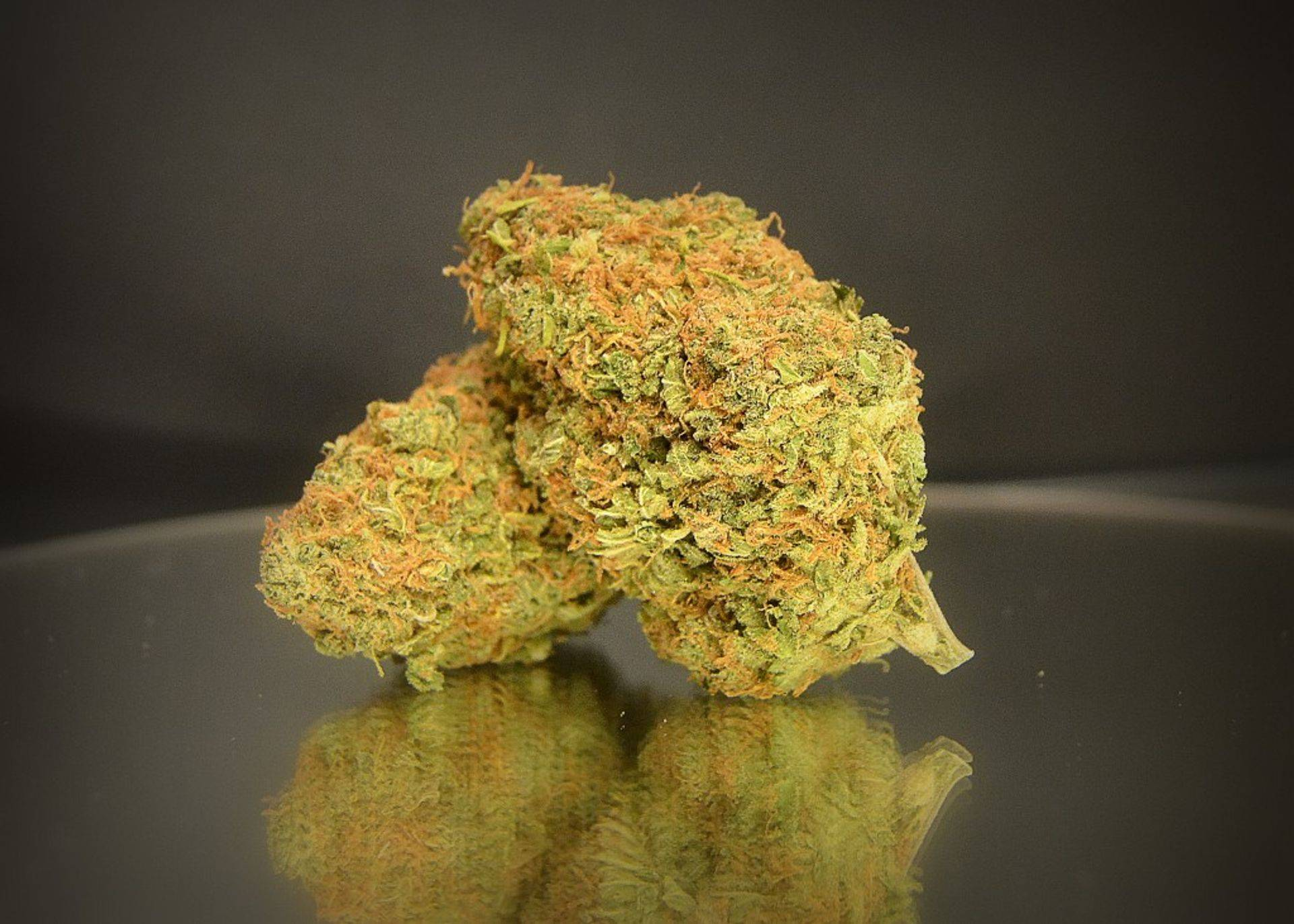 Marijuana Strains Available for sale