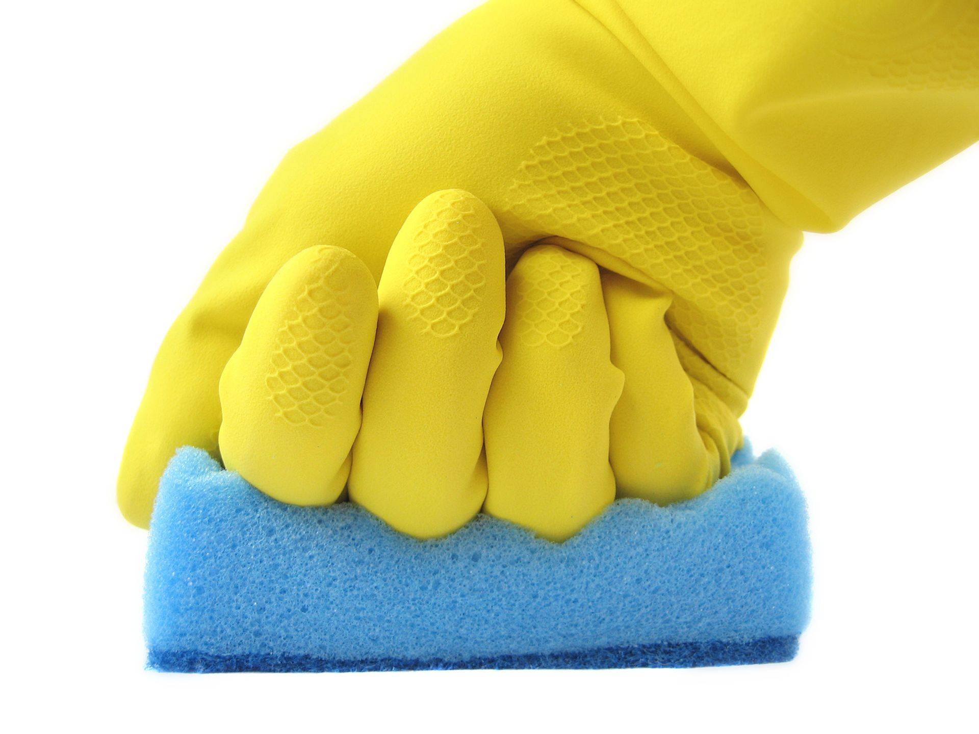 Home Cleaners All Cleaning service
