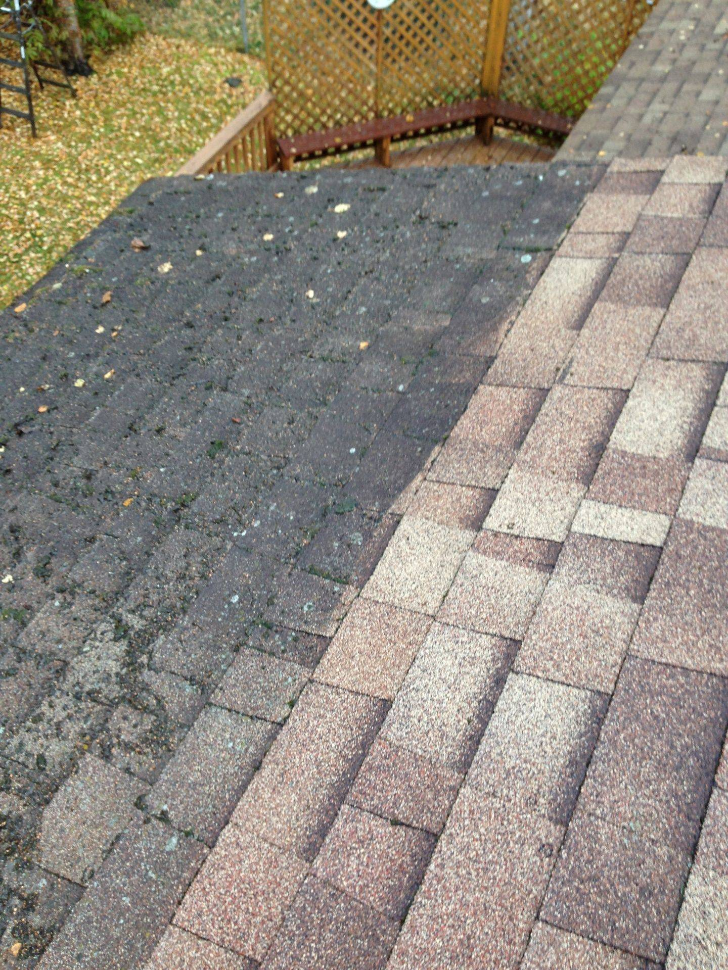 Roof_moss_removal_and_control