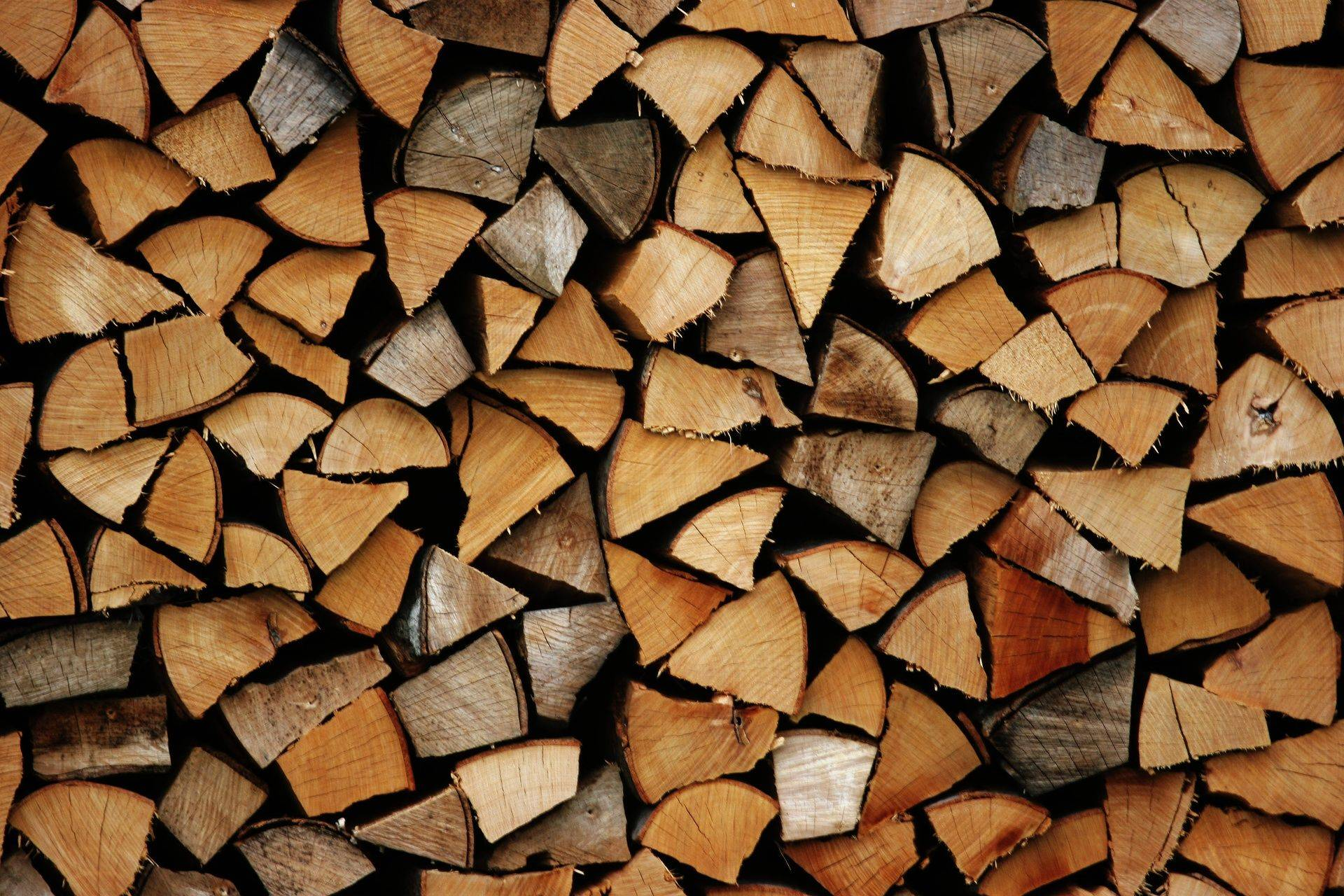 Dry, seasoned hard wood logs