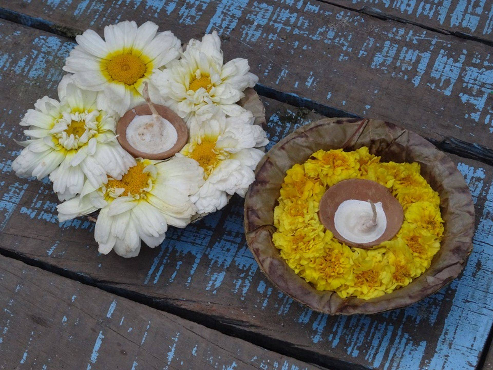 "<img src=""australian womens travel .jpg"" alt=""two votive candles with yellow and white flowers, varanasi, india "">"