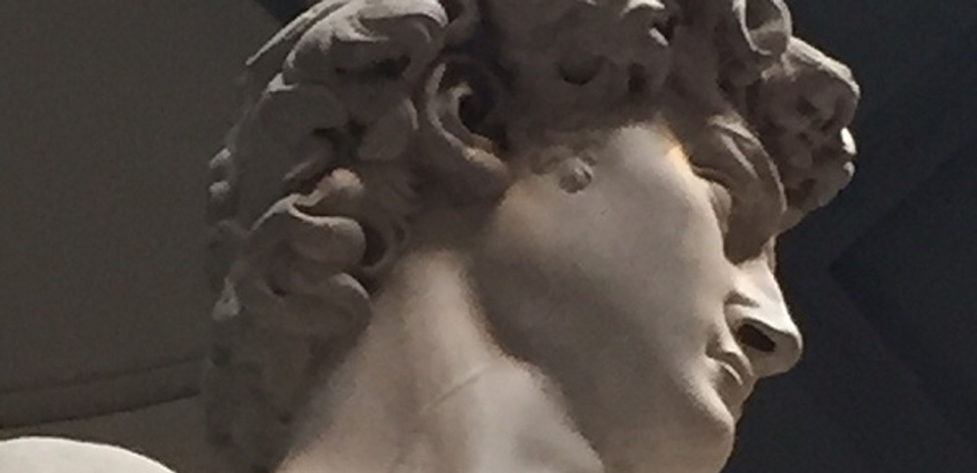 """<img src=""""australian womens travel.jpg alt= womens tour, detail of the head of the statue of david,  florence italy"""">"""
