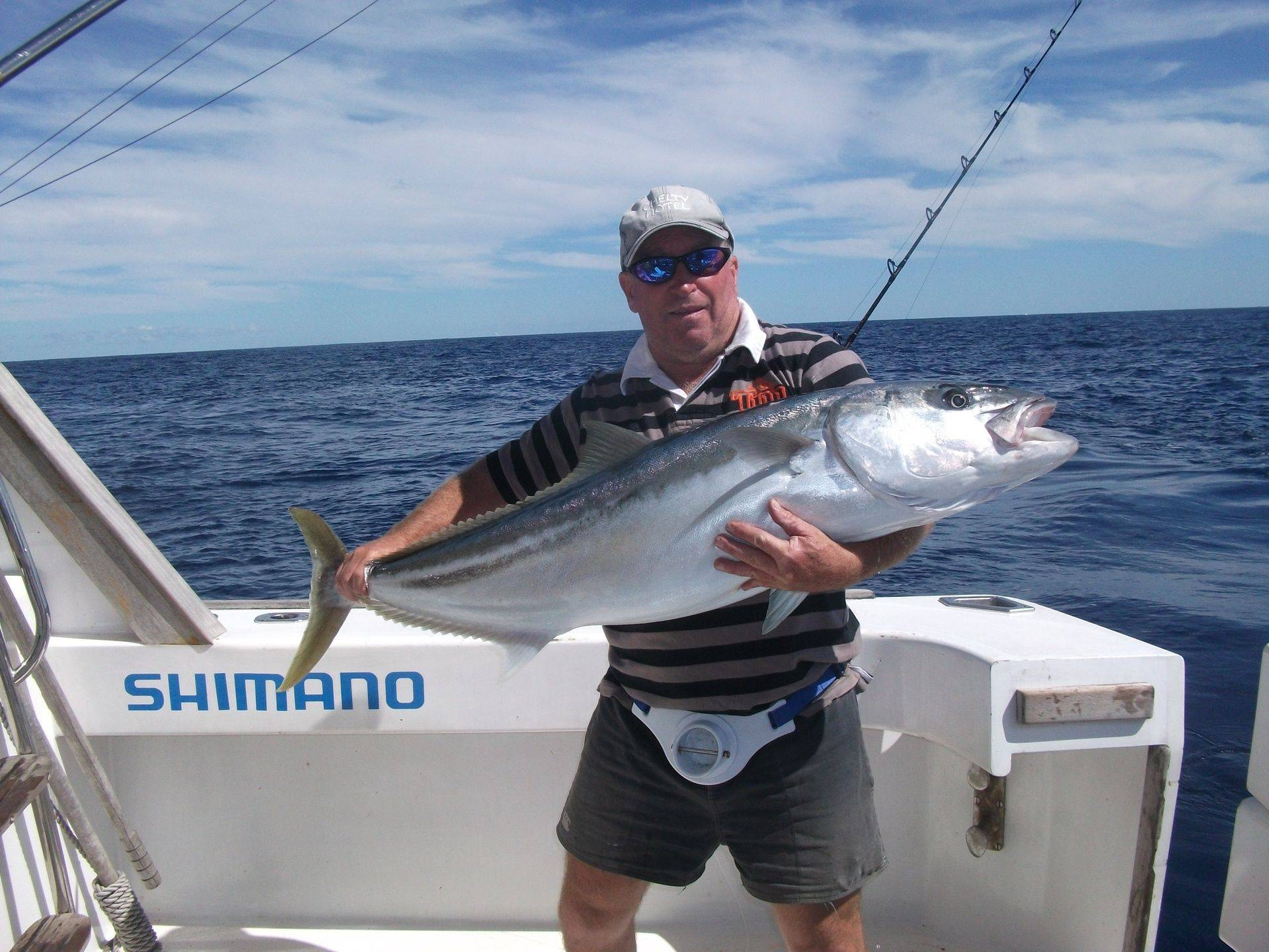 Kingfish on a live bait