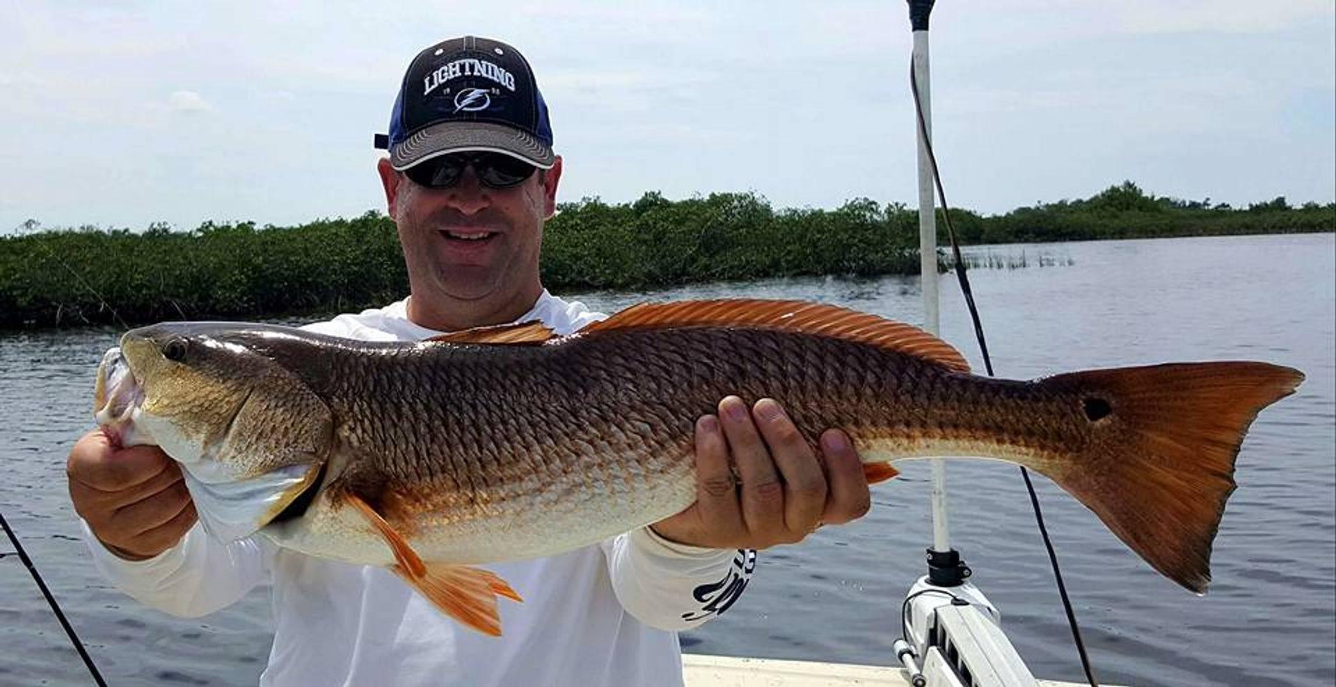 Inshore fishing charters florida
