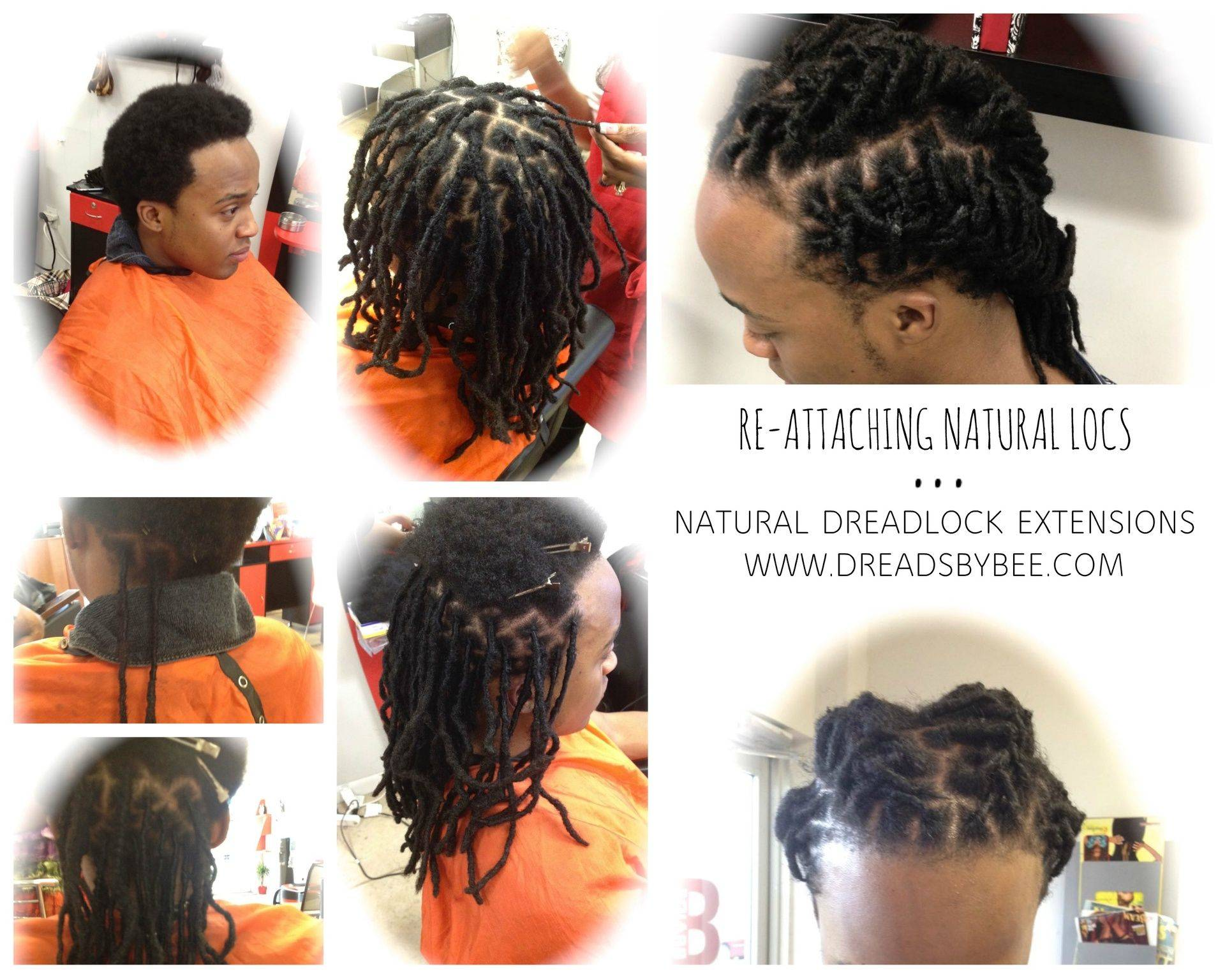 Instantloc Dread extensions used to repair natural locs and create a bridge for bald areas to fill in full head of Locs.