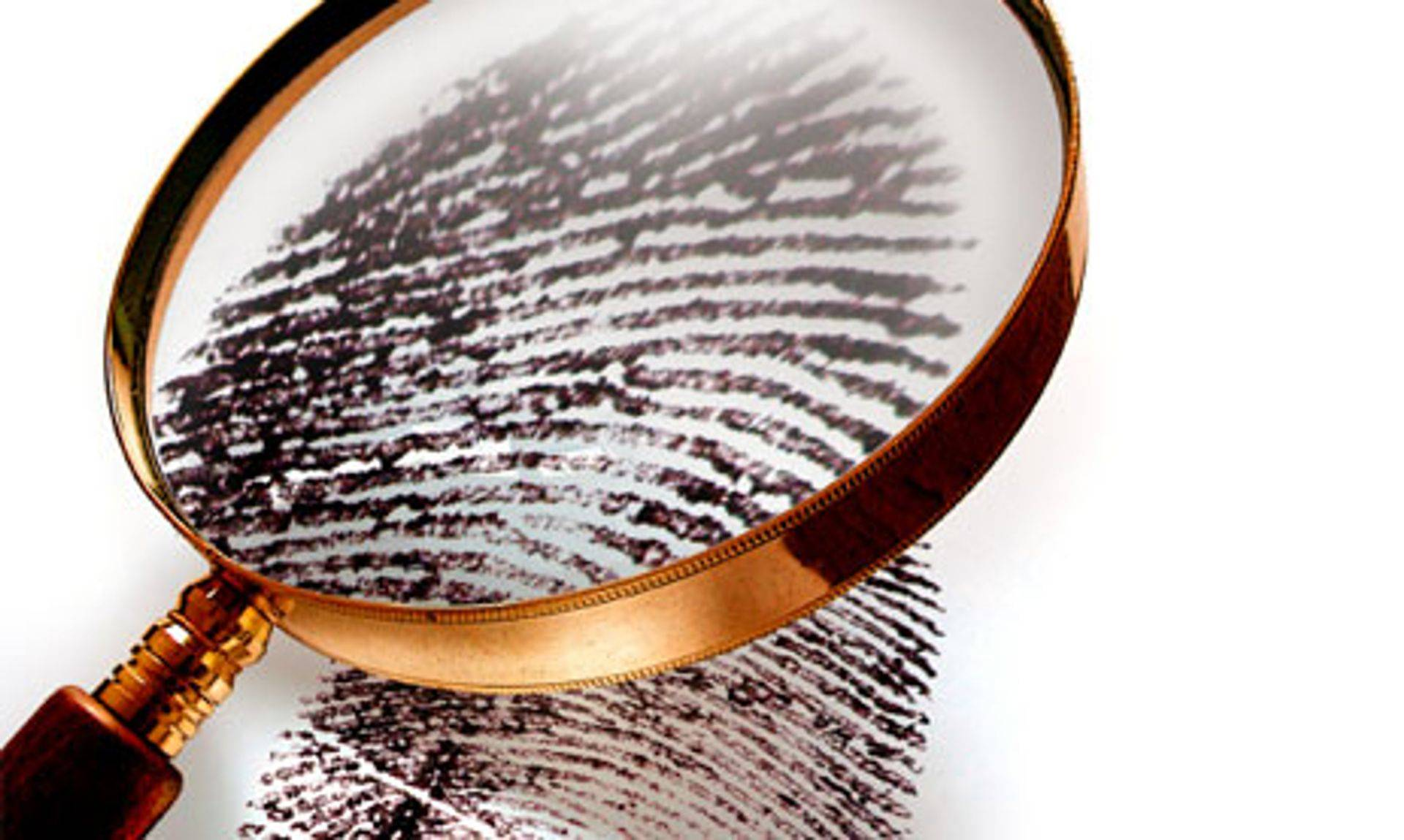 private investigators Leave no clue behind protection services