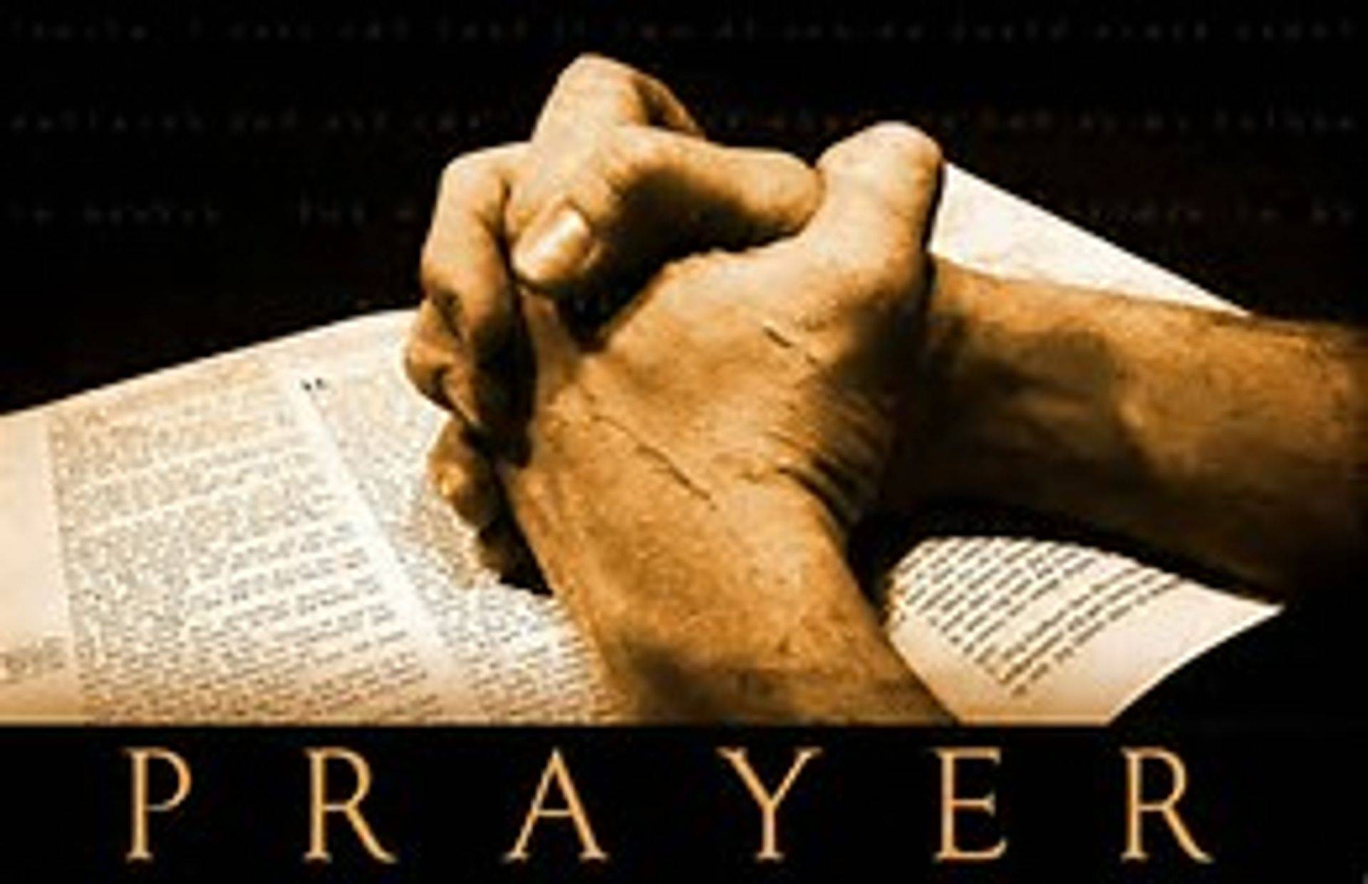 We want to pray with you.  Send us your prayer requests.