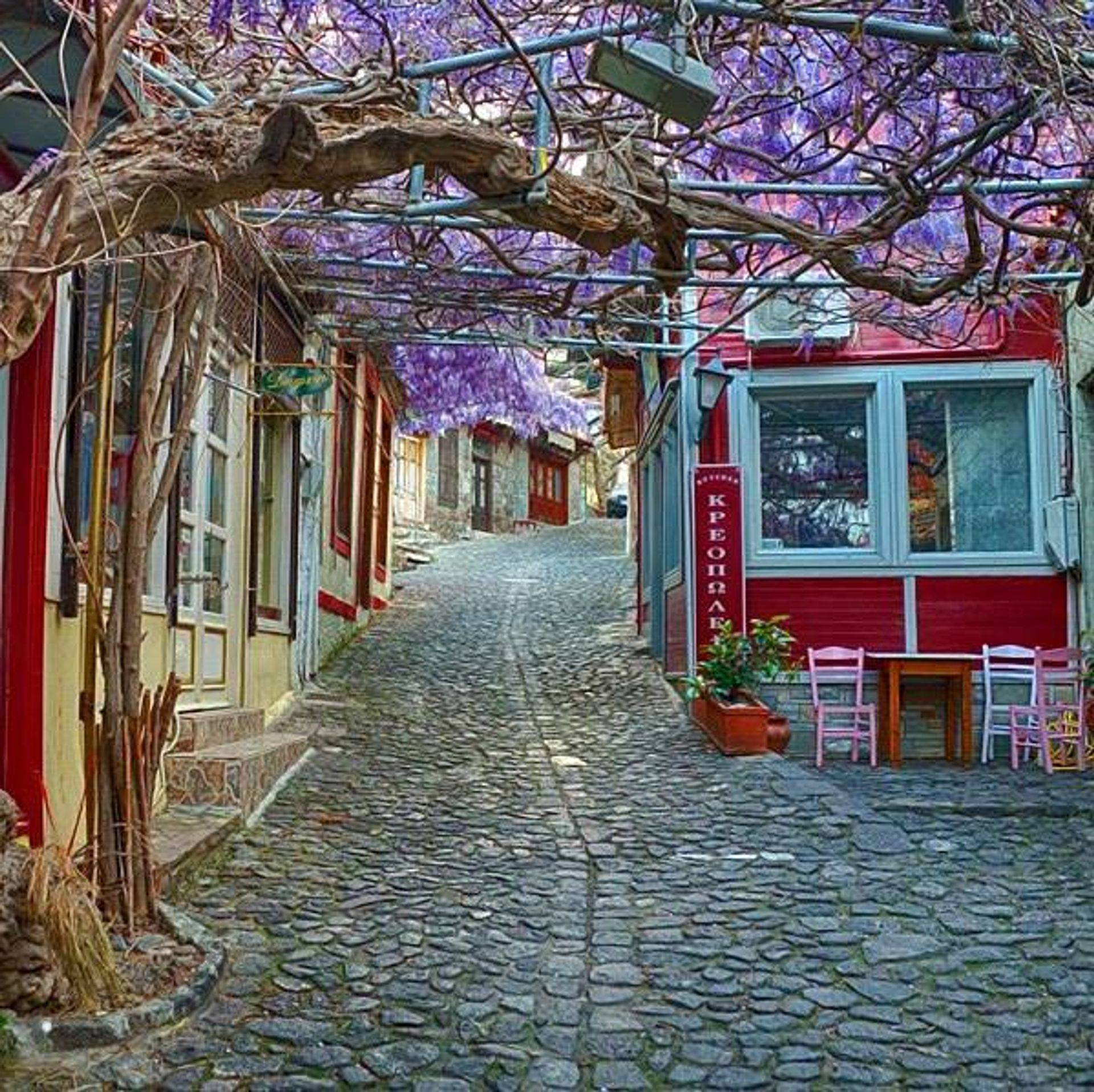 Molyvos, Lesvos, the most beautiful street in Europe, awarded