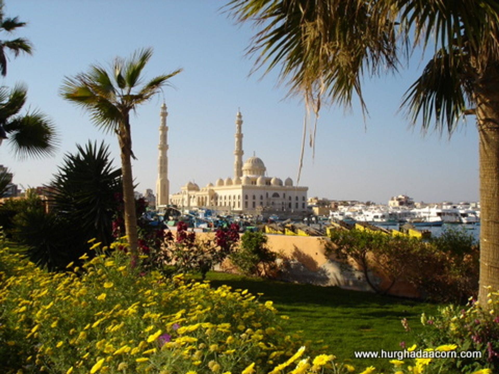 Hurghada Mosque near Marina