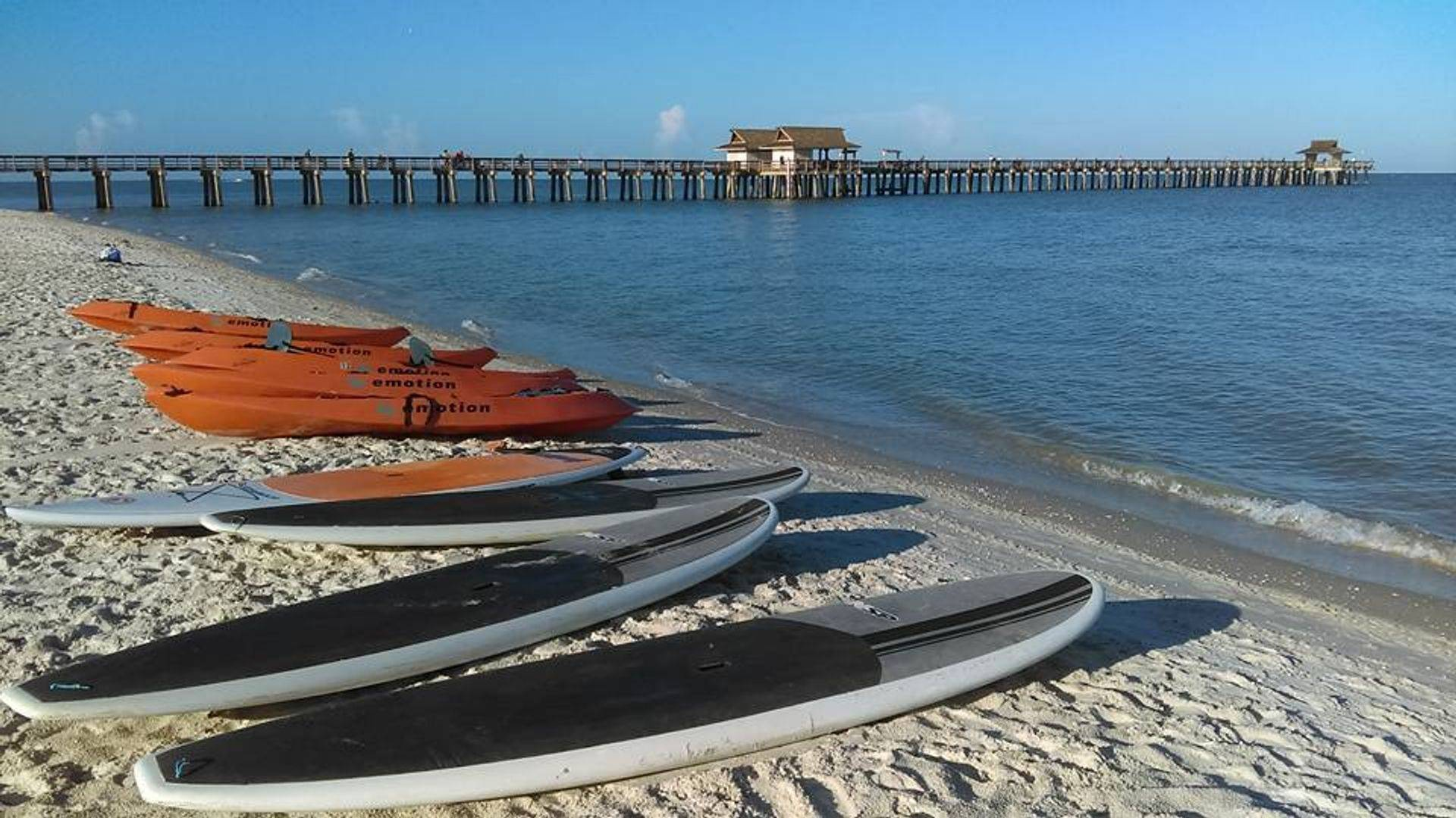 Naples paddleboard rental m free delivery