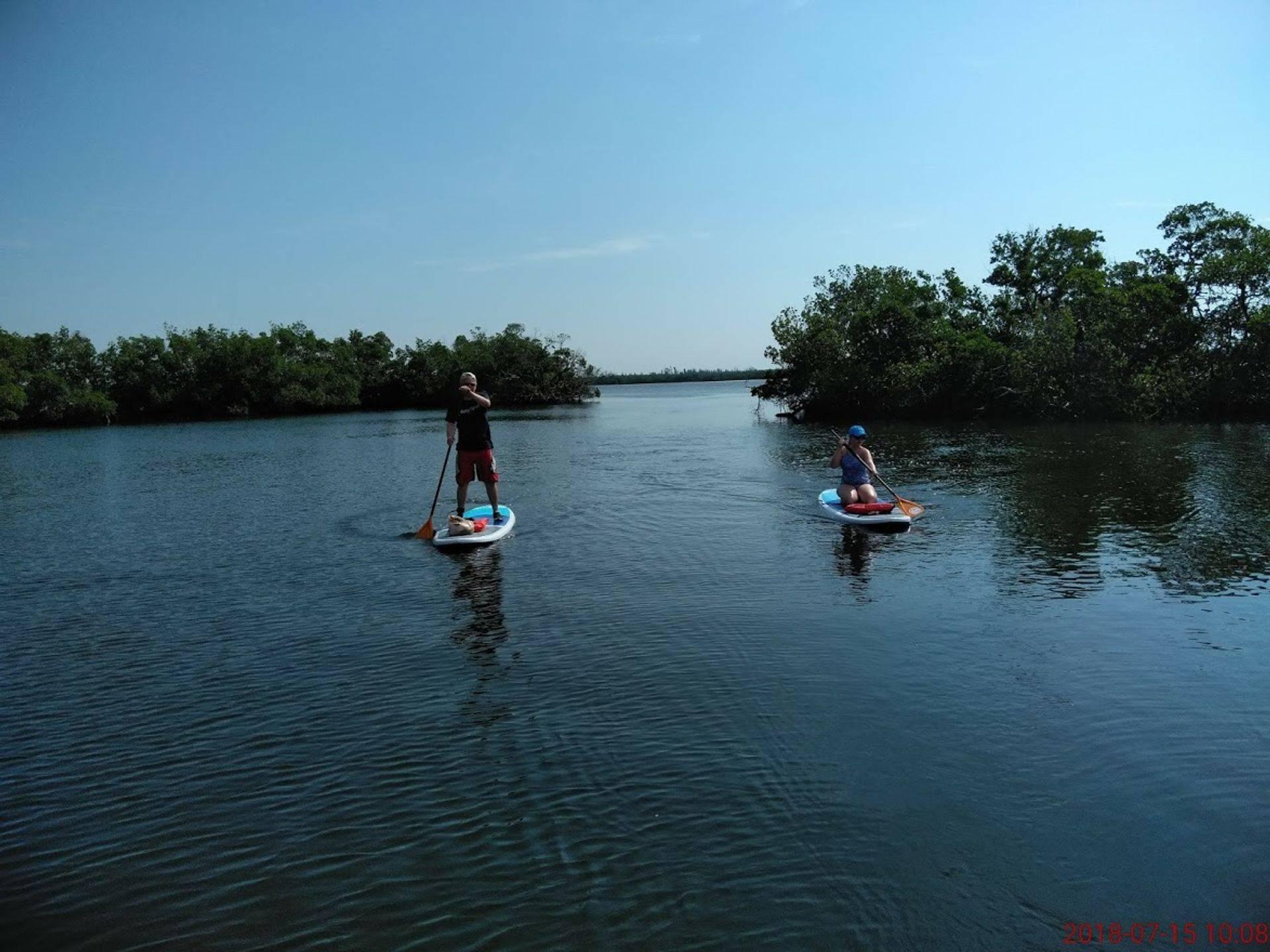 Paddleboard adventure eco tour