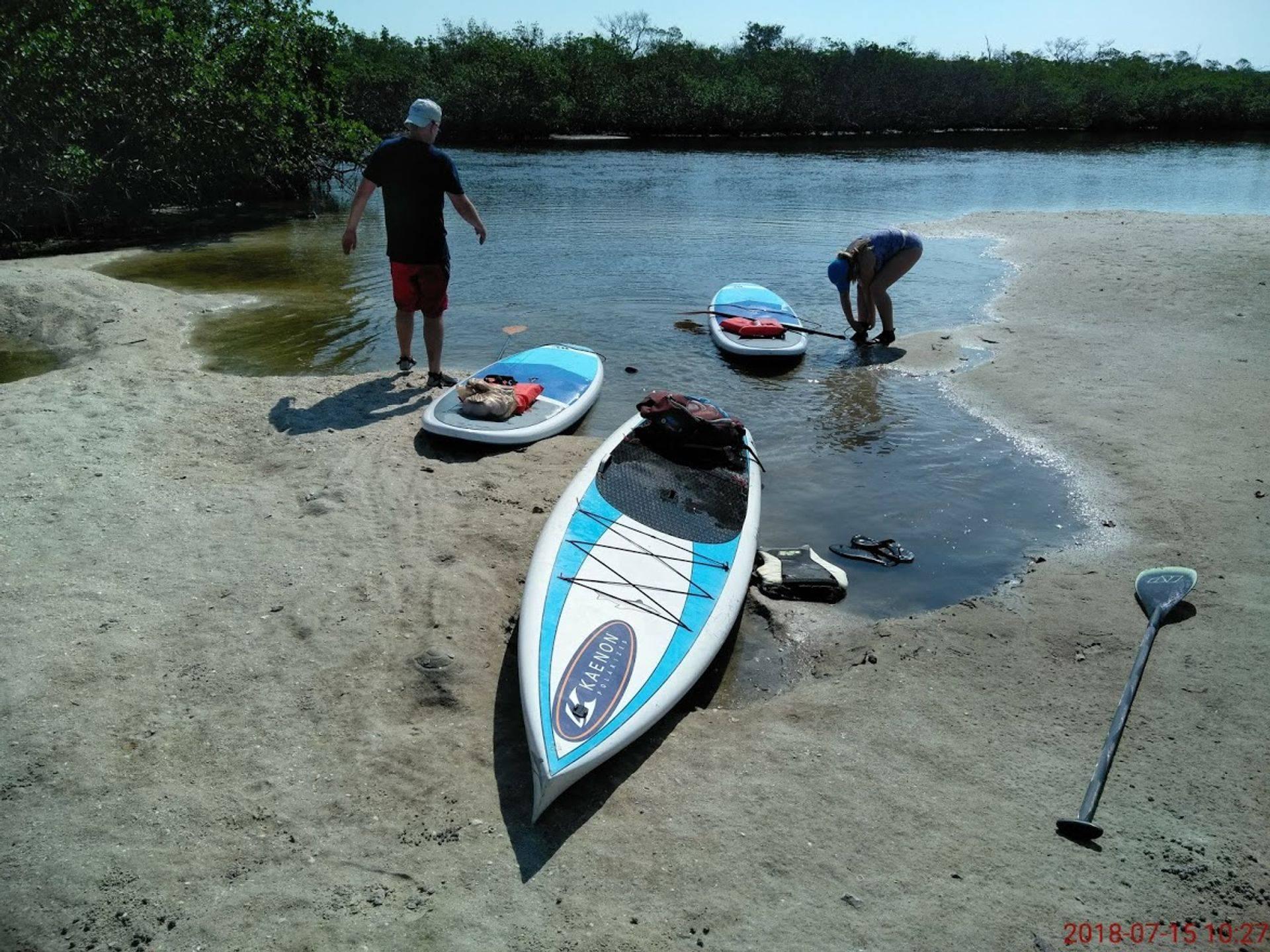 paddleboard tour keewaydin