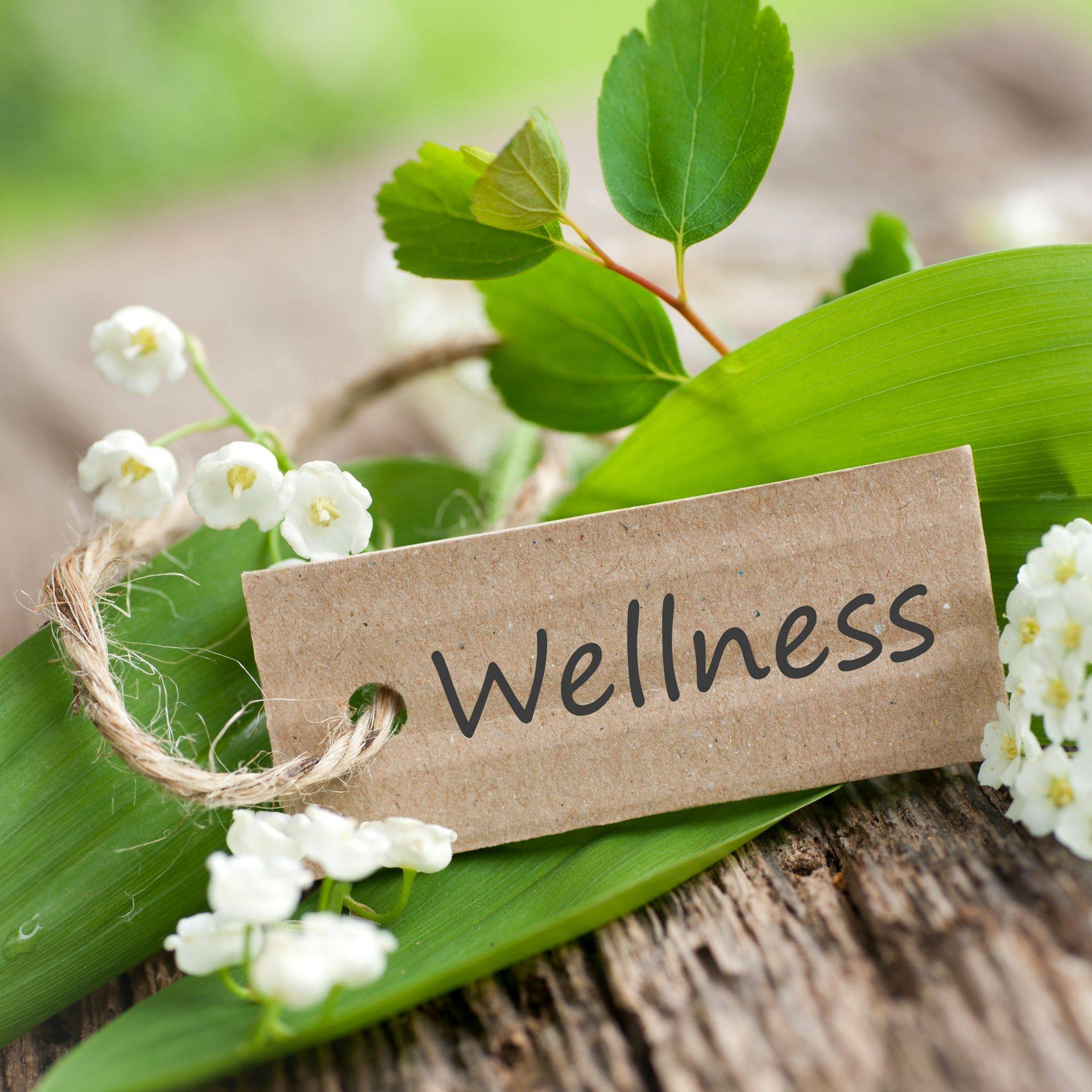 A wellness sign with palnt around