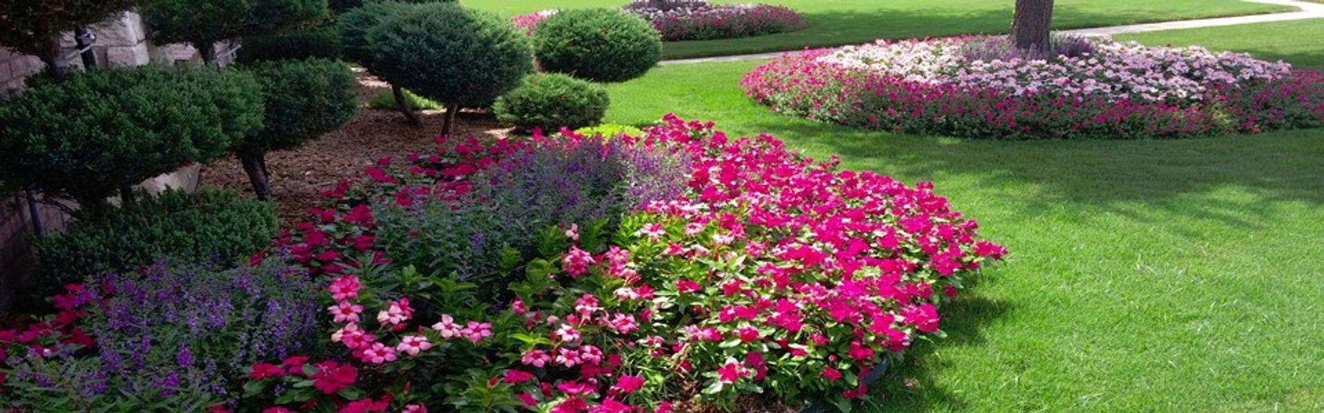 Lawn Landscaping Service  Yard  Barber Lawn Service LLC