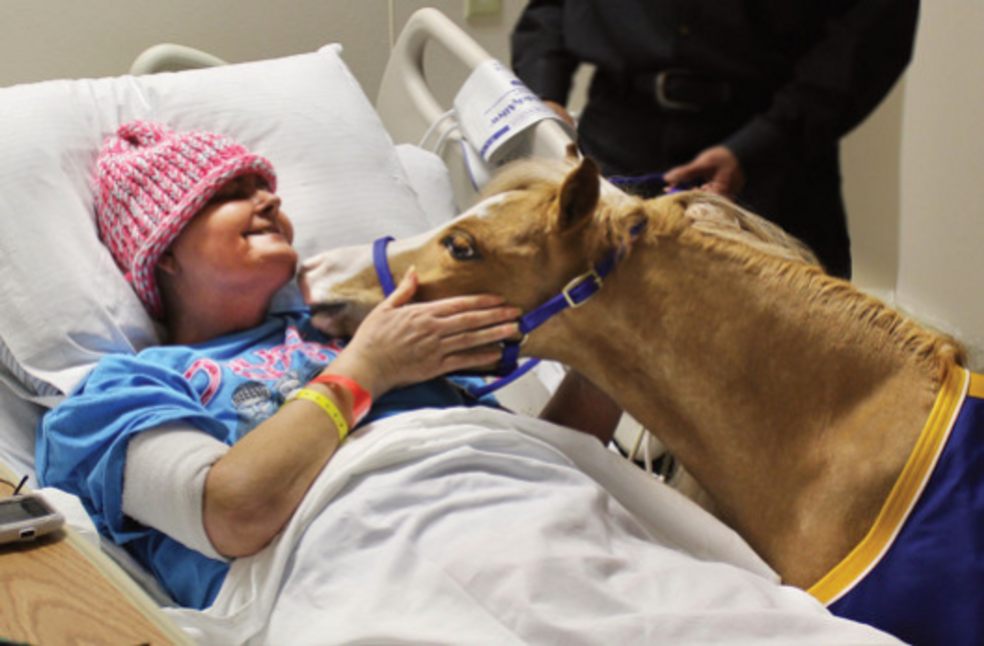 Miniature Therapy Horse, Hamlet, brings love to those who are ill.
