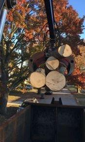 A log pickup in Wilmington Delaware