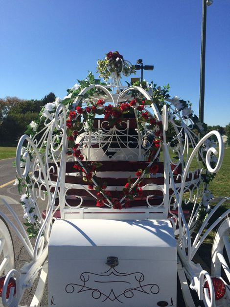 Romantic Cinderella Carriage
