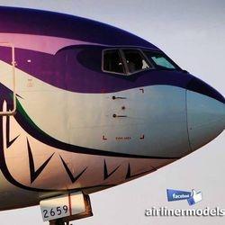 aircraft nose