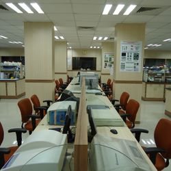 MBT: Molecual Biology and Biotechnology Lab