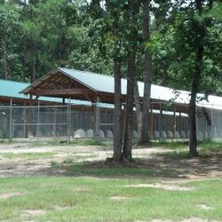 Kennels F and G.  50 kennels with 10 foot fence and sliding gates for easy entrance and exit.