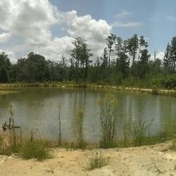 Training pond on the kennel property.