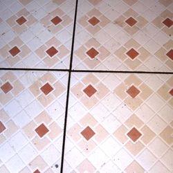 Shower room floors