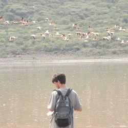 Conservation work at Lake Bogoria, Kenya