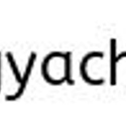 Bagnell Dam