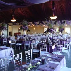 Ombre room draping in purples!