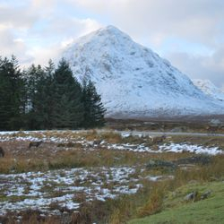 Red Deer & Buachaille Etive Mor