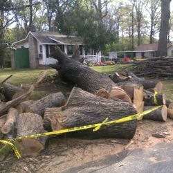 Storm Cleanup after a Hurricane